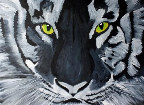 tiger15
